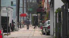 Mies kävelee hänen koiransa. Arkistovideo