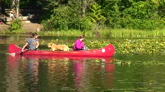 women paddle in a red canoe with their two dogs. - stock footage