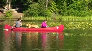 Stock Video Footage of women paddle in a red canoe with their two dogs.