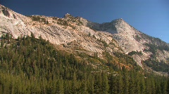 Trees stand at the edge of a mountain at Tuolumne Meadows Stock Footage