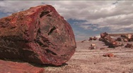 Stock Video Footage of The remains of a petrified tree in the Arizona Petrified