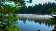Steam rises from Trillium Lake which is surrounded by pine Stock Footage