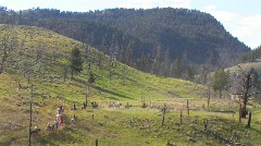 Horses and riders take a pack trip through the wilderness. Stock Footage