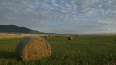 Bales of hay sit in green fields on a prairie farm. Stock Footage