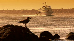 Fishing Boat and Seagull on Rock at Sunset at Yaquina Bay in Newport, Oregon Stock Footage
