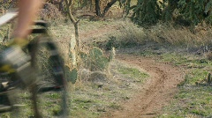 A cyclist rides down an off road trail. Stock Footage