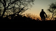 A mountain bike rider takes off down a trail. Stock Footage