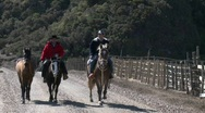 Stock Video Footage of Chilean cowboys on the road near Buchupureo, Chile