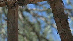 Close up of leather joinery on a wooden gate in San Pedro Stock Footage