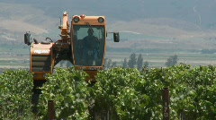 Time lapse of mechanized tilling in a Monterey County - stock footage