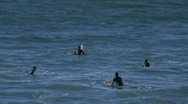Stock Video Footage of Surfers waiting for waves at Pismo Beach, California.