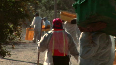 Harvest workers with empty bins move to a different row at Stock Footage