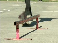 Skate Park HD Footage