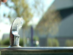 A man sips from a water fountain Stock Footage