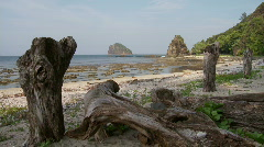 Beach during lower tide with huge and beautiful rock formation  - stock footage