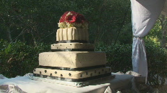 Cake20 Stock Footage