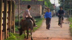 A man sits on a water buffalo and watches people pass in a Stock Footage