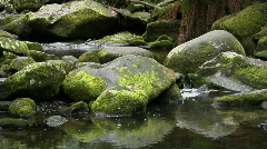 Moss covered rocks are reflected in a stream. Stock Footage