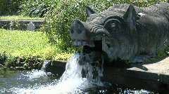 Water pours from the mouth of a boar statue at a water Stock Footage