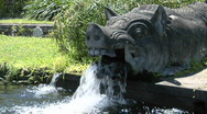 Stock Video Footage of Water pours from the mouth of a boar statue at a water