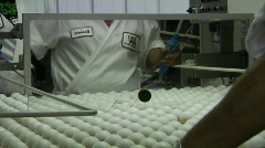 A worker sorts eggs in a factory. Stock Footage