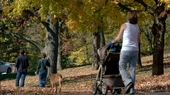 Park Walkers 339 - stock footage