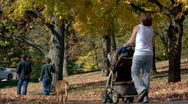 Park Walkers 339 Stock Footage