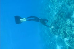 Beautiful freediver girl swims along coral reef - stock footage