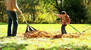 Stock Video Footage of Raking Leaves 359