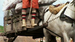 Man on Horse Favela Brazil Stock Footage