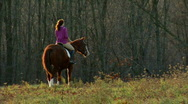 Woman with Horse 415 Stock Footage