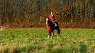 Woman with Horse 419 Stock Footage