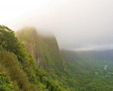 Nu'uanu Pali Mountain Overlook PAL Stock Footage