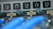 Ethernet switch macro Stock Footage