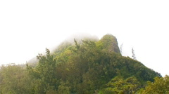 Nu'uanu Pali Mountain Peak 480x270 Stock Footage