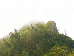 Nu'uanu Pali Mountain Peak 640x480 Stock Footage