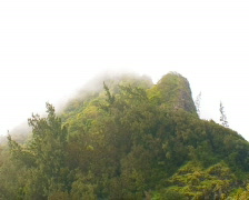 Nu'uanu Pali Mountain Peak PAL Stock Footage