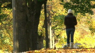 A Walk Through The Fall Stock Footage
