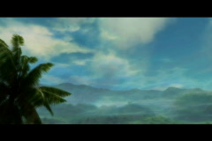 Palm tree and misty clouds landscape Stock Footage