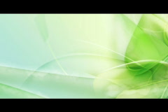 green leaf with stem shoot - stock footage