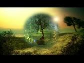 Magic energy tree  Stock Footage