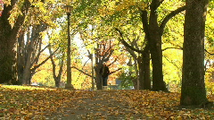 A Beautiful Fall Day Stock Footage