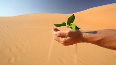 leaf in hand in desert - stock footage