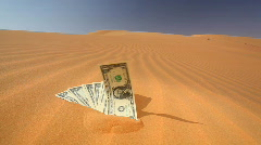 Dollars in the sand - saying Stock Footage