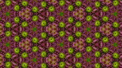 Organic kaleidoscope from blooming red dahlia flower 5a - stock footage