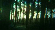 Eerie Landscape Scary woods 02- Vintage 8mm Film Stock Footage