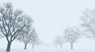 Snow landscape background Stock Footage