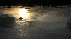 Late sunset over the freezing pond  Stock Footage