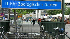 Germany Berlin Zoological garden traffic zebra crossing Stock Footage