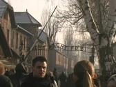 Auschwitz Gate Stock Footage